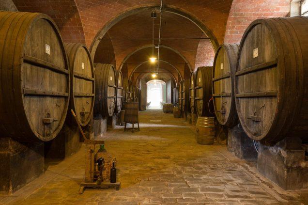 Azienda-agricola-Tenuta-di-Monaciano-Siena-11