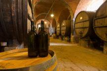 Azienda-agricola-Tenuta-di-Monaciano-Siena-12